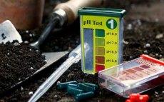 soil-pH-test-kit