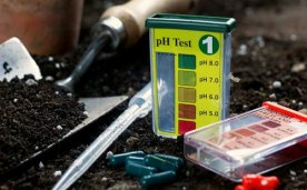 soil-pH-test-kit